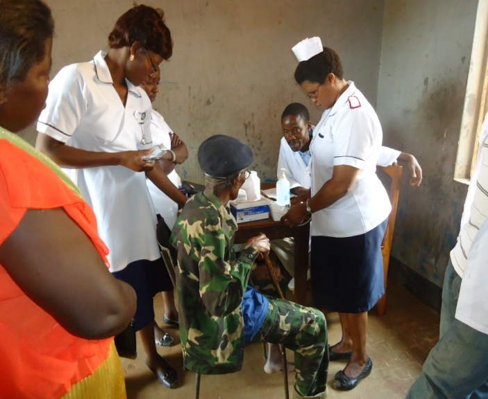 Nurses making patients assessment